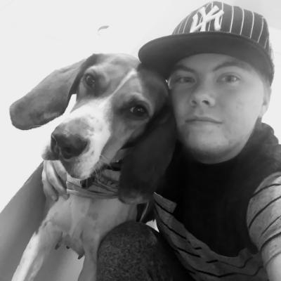 Cody's dog day care