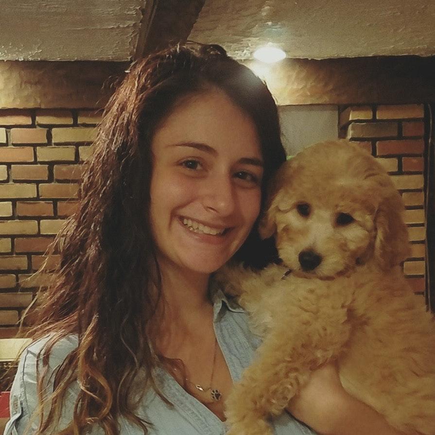 Lisamarie's dog day care