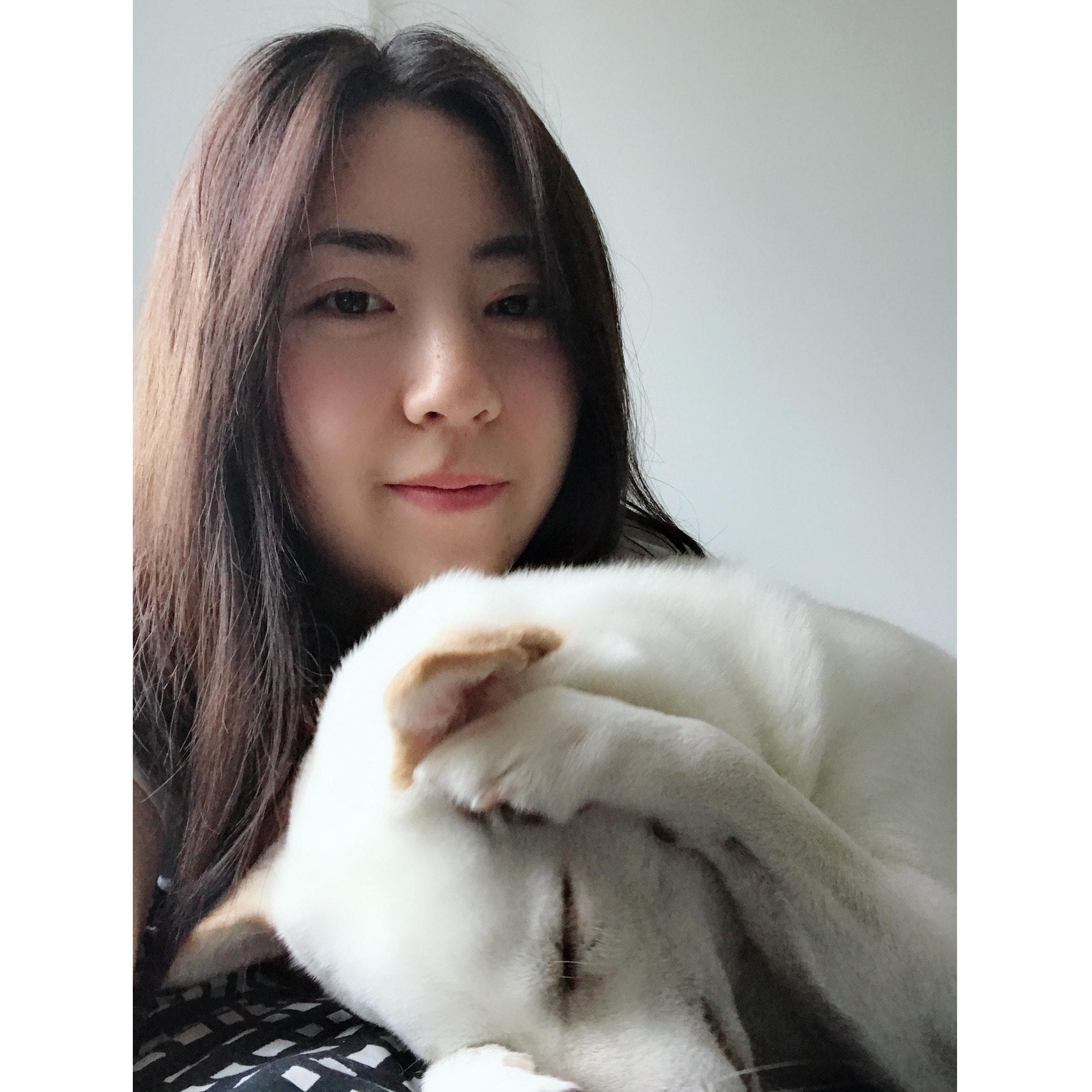 Junyi's dog day care