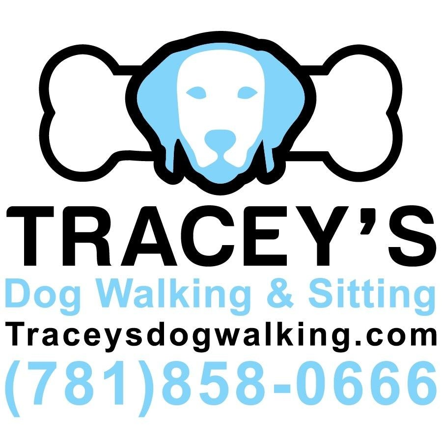 Tracey's dog day care