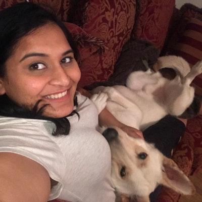 Shivangi's dog boarding
