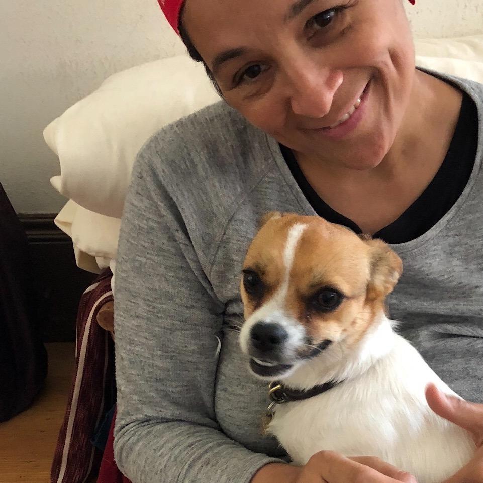 Krista's dog day care