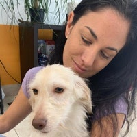 Lucila's dog day care