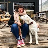 Meredith & Luke's dog boarding