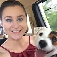 Caitlyn's dog boarding