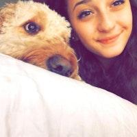 dog walker Anina
