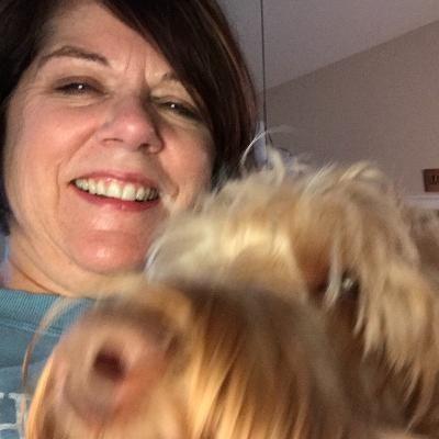 Debi's dog day care