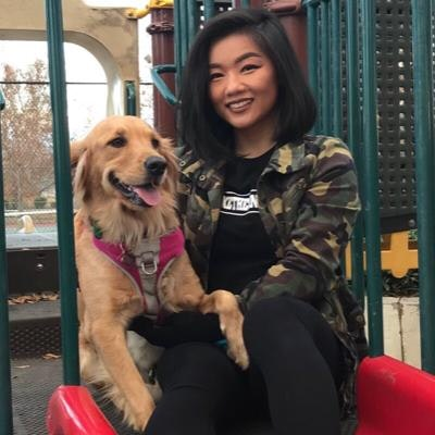 Cha's dog day care