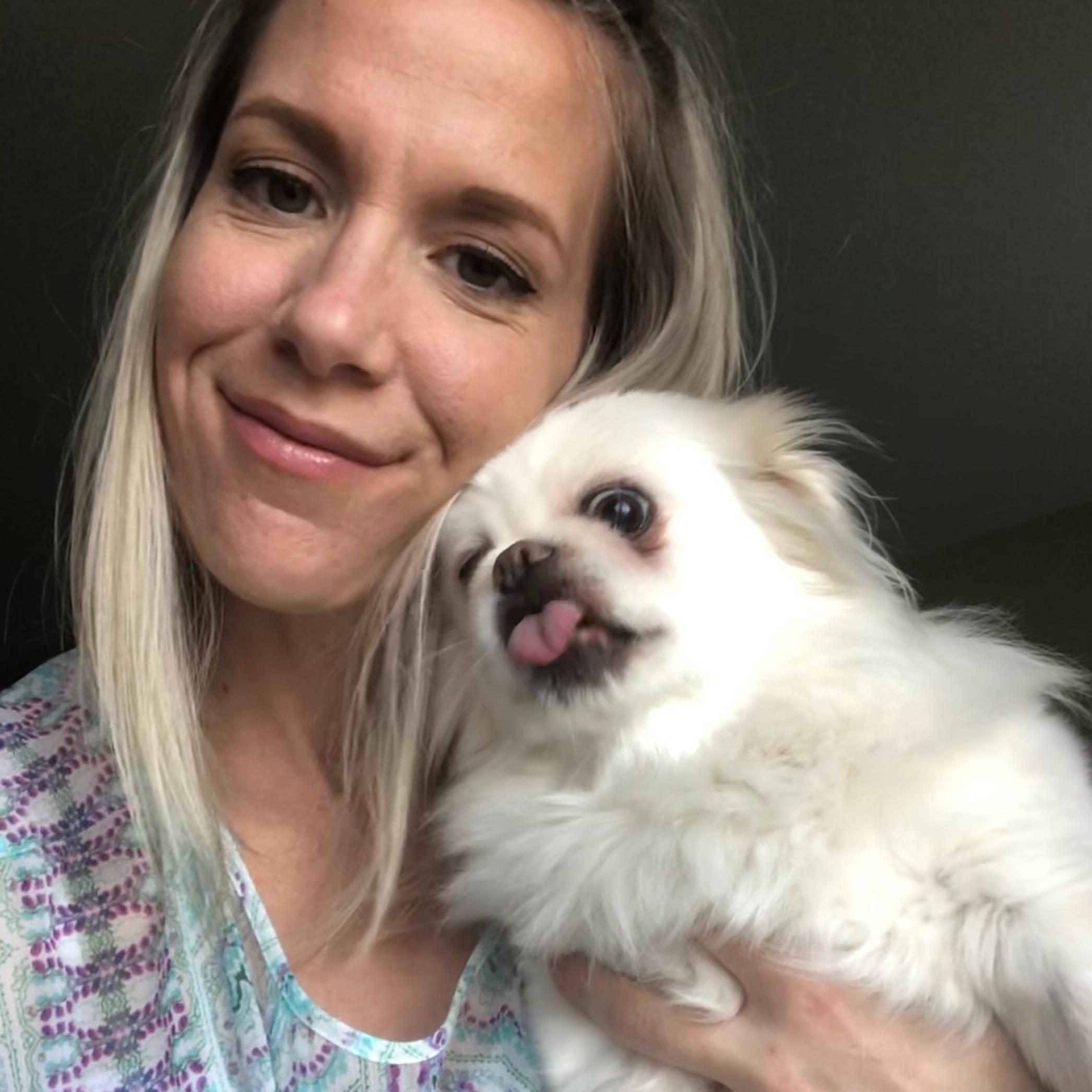 Jill's dog boarding