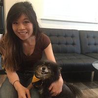 Kimberly's dog boarding