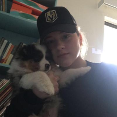 Ash's dog day care