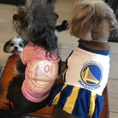 """Remberto """"Tito""""'s dog day care"""