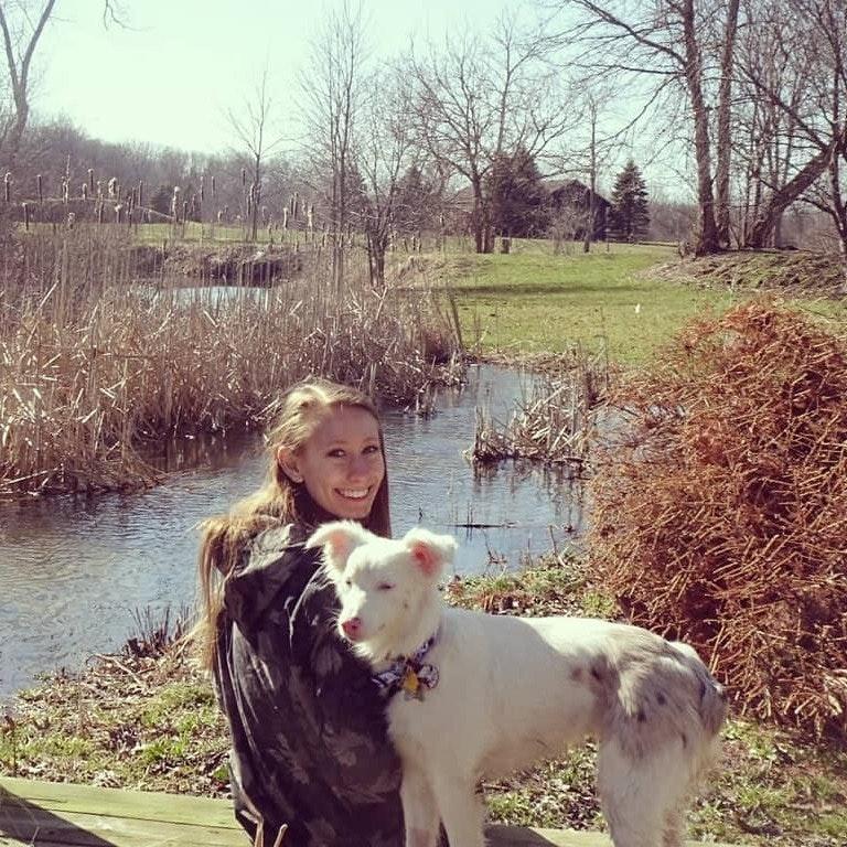 Jacie's dog day care