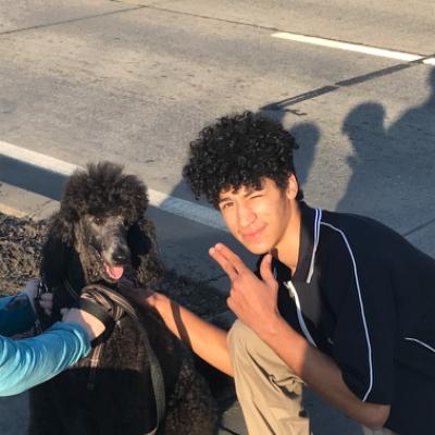 Tavian's dog day care