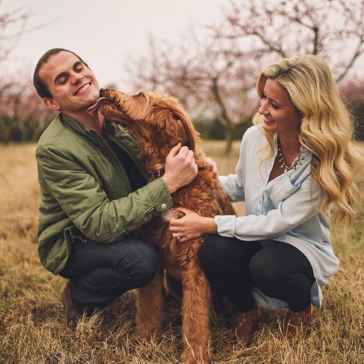 Jessica & Riley's dog day care