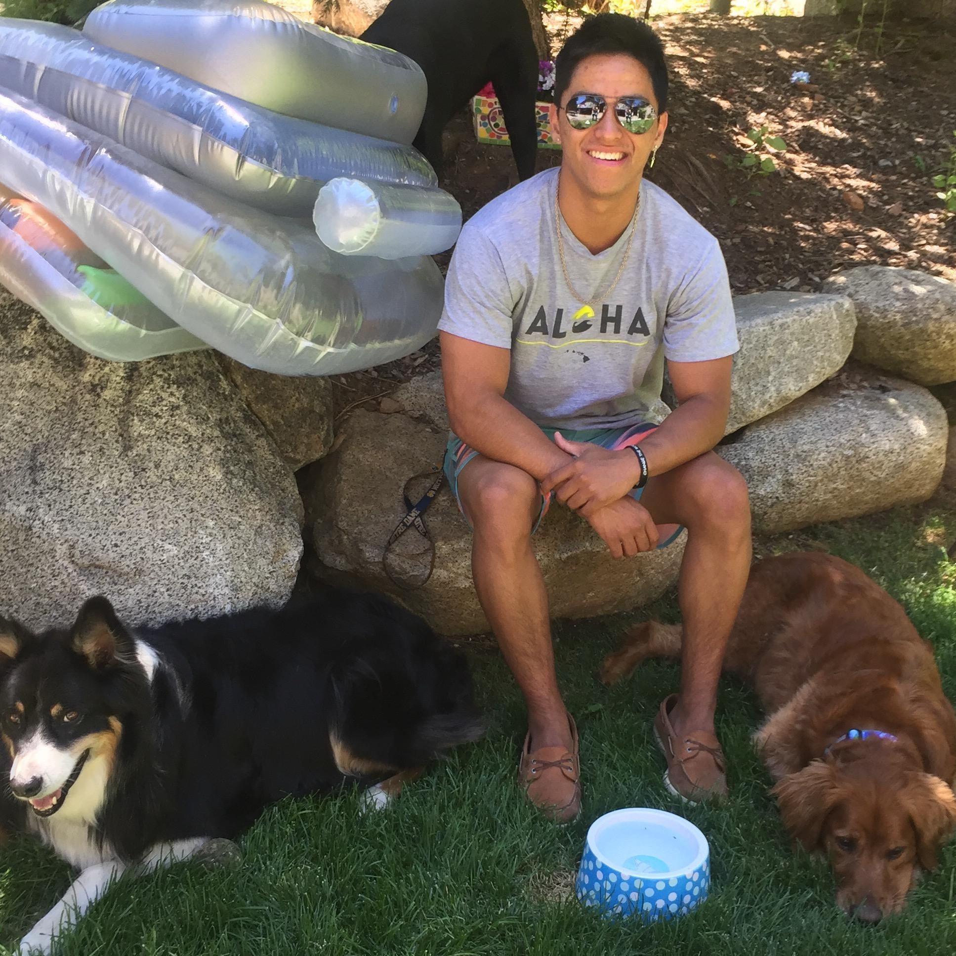 Jacob's dog day care