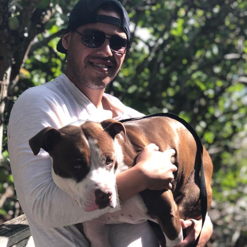 Quinn's dog day care