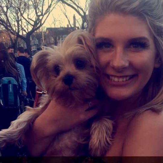 Isabelle's dog boarding