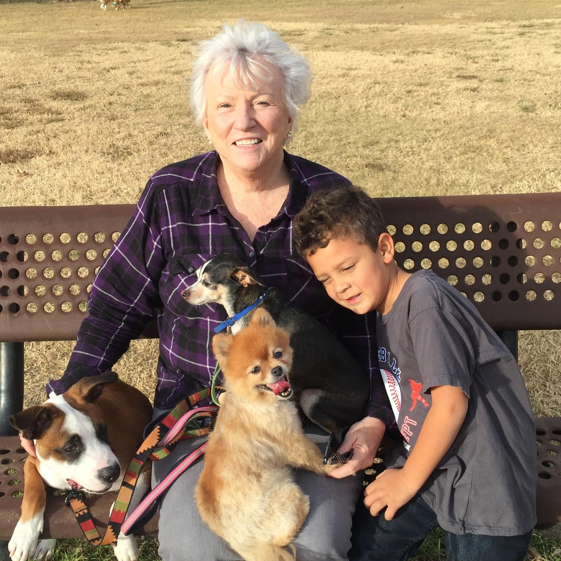 Gaye's dog day care