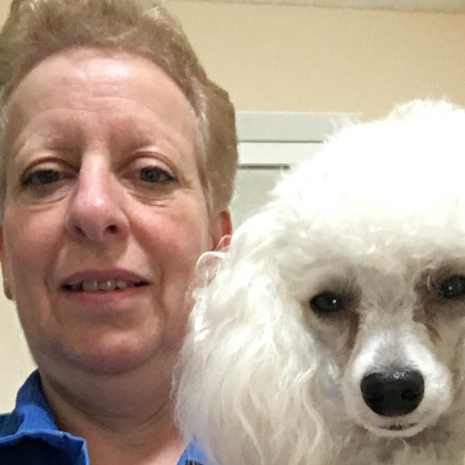 Robbin's dog day care