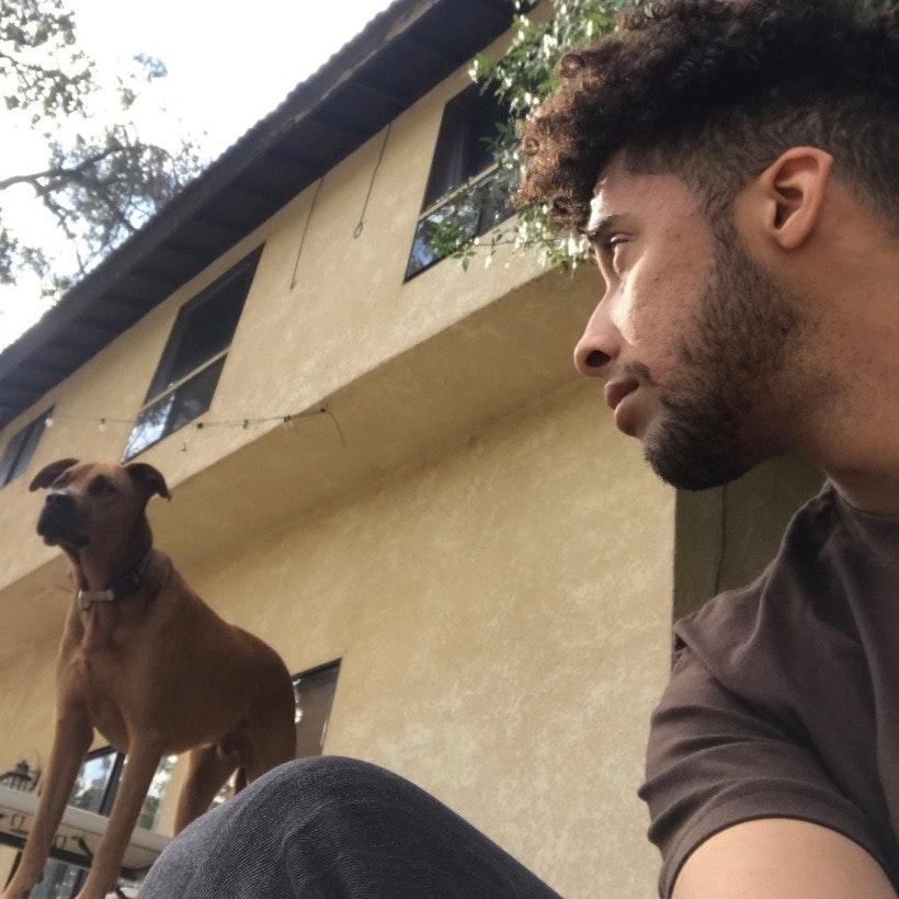 dog walker Salem