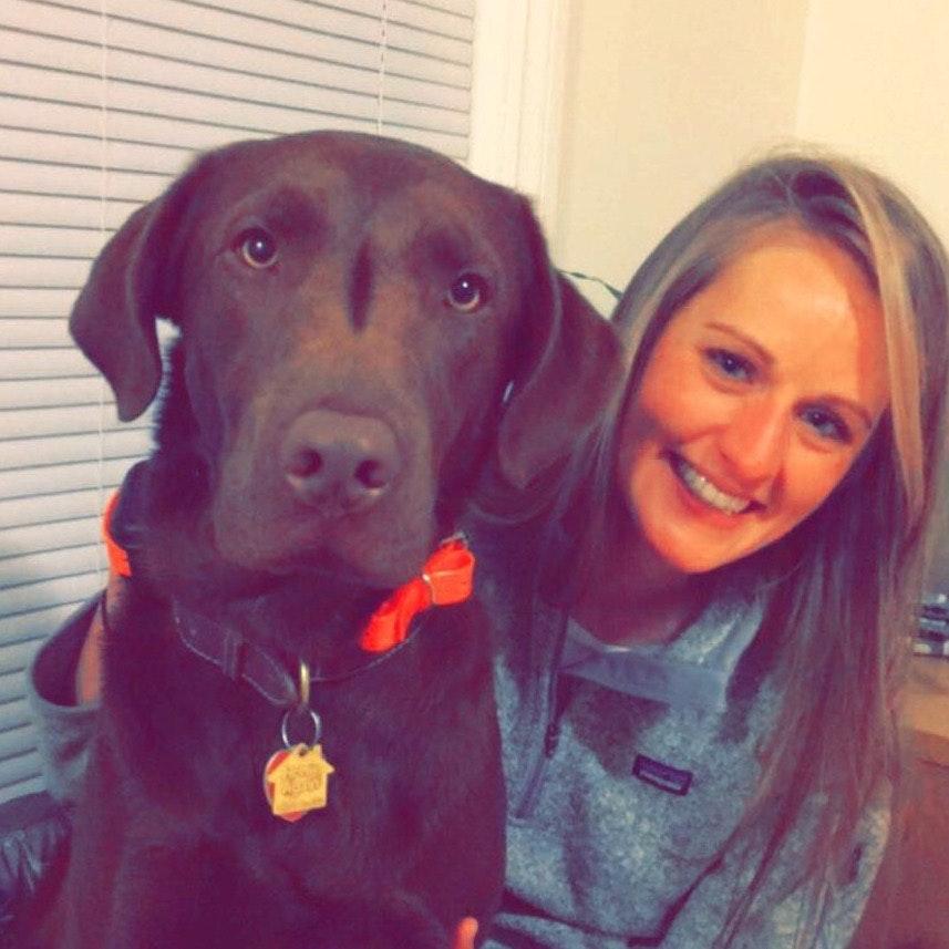 Lorin's dog day care
