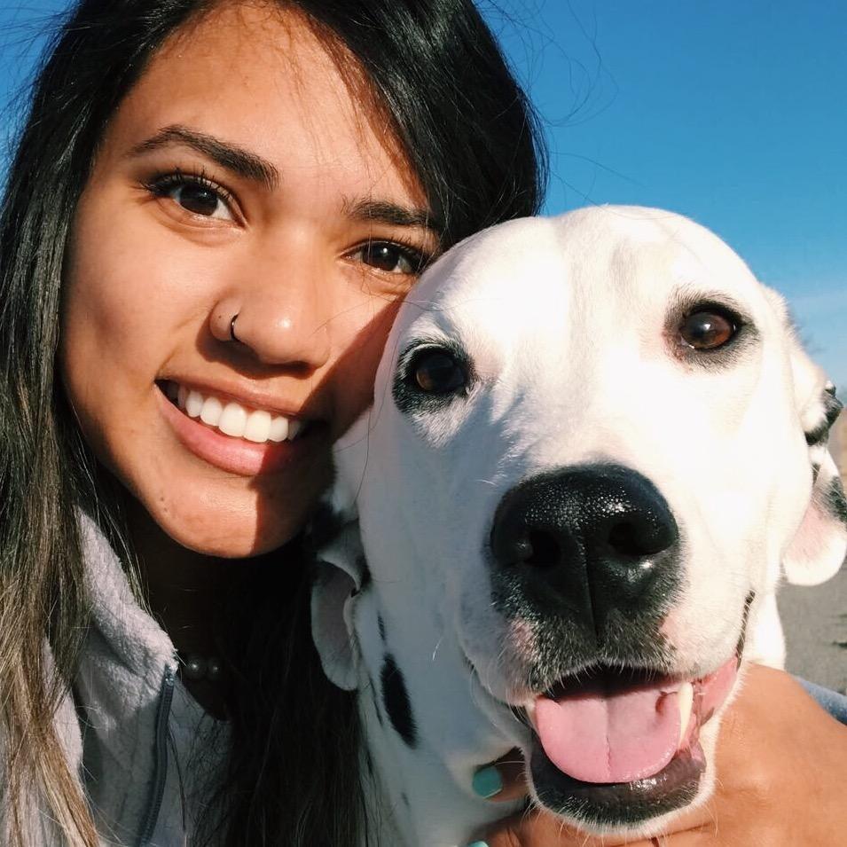 dog walker Fantasia