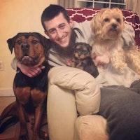 Brandon & Elizabeth's dog day care