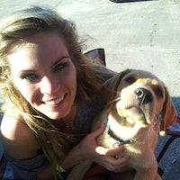 Amber's dog boarding