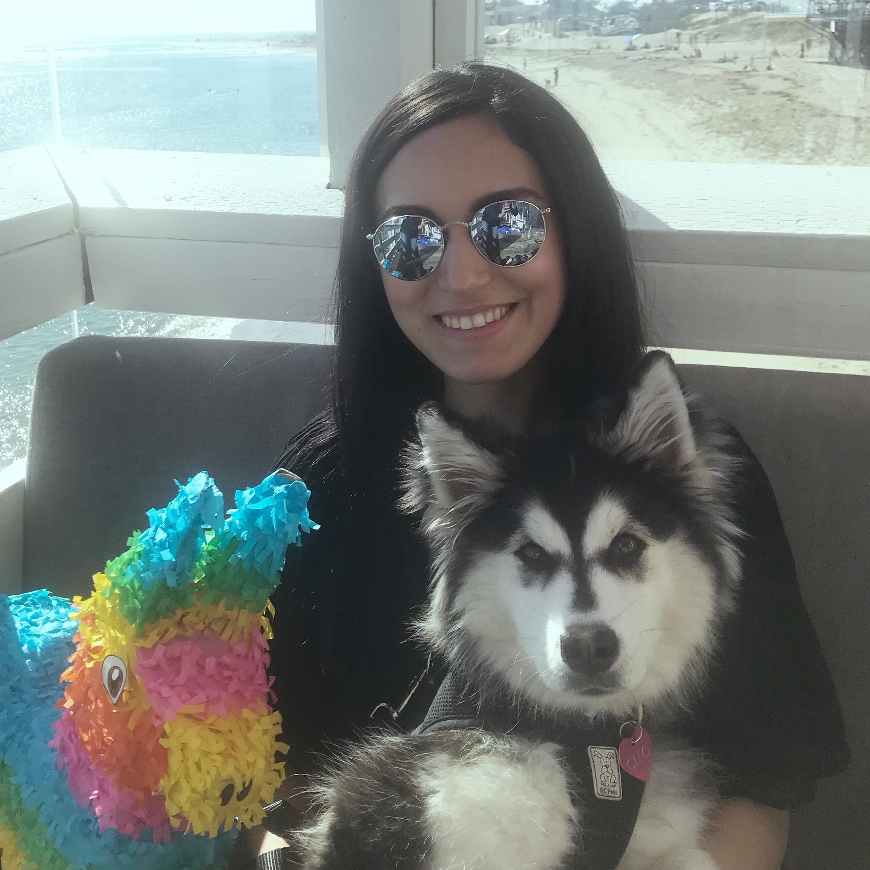 Rima's dog boarding