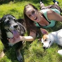 William & Treva's dog day care
