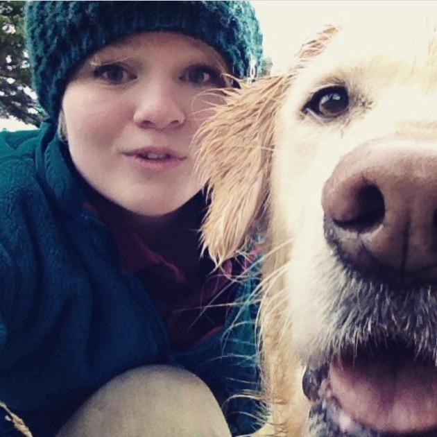 Dawn's dog day care