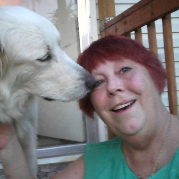 Sandy's dog day care