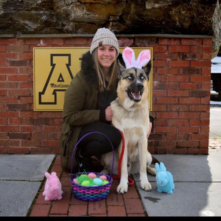 Madison's dog day care
