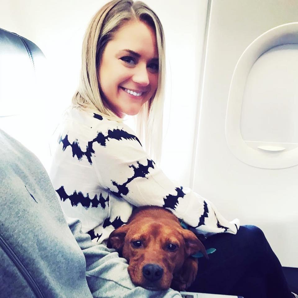 Xandra's dog day care