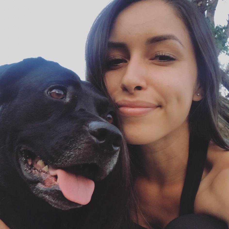 Tamar's dog day care