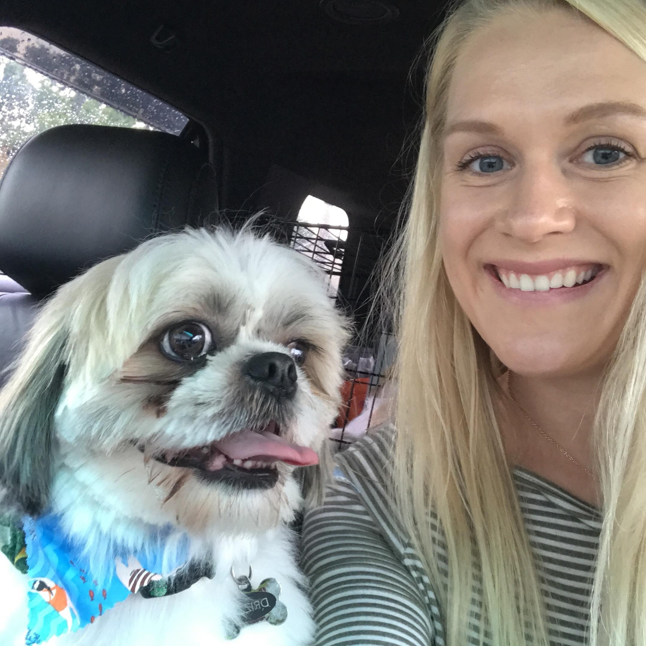 Maeleah's dog day care