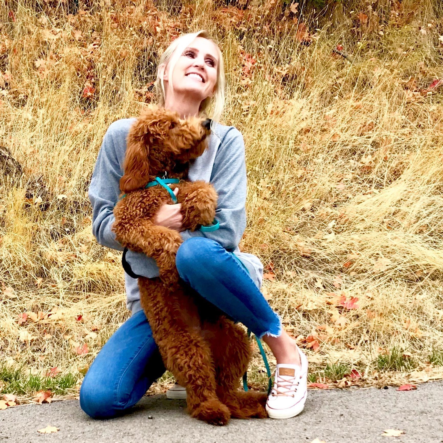 Jax's dog day care