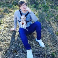 Jared's dog day care