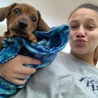Mariya's dog day care