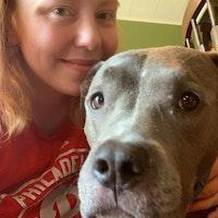 Lexie's dog day care