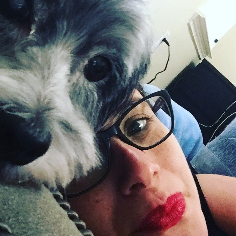 Claudia's dog boarding