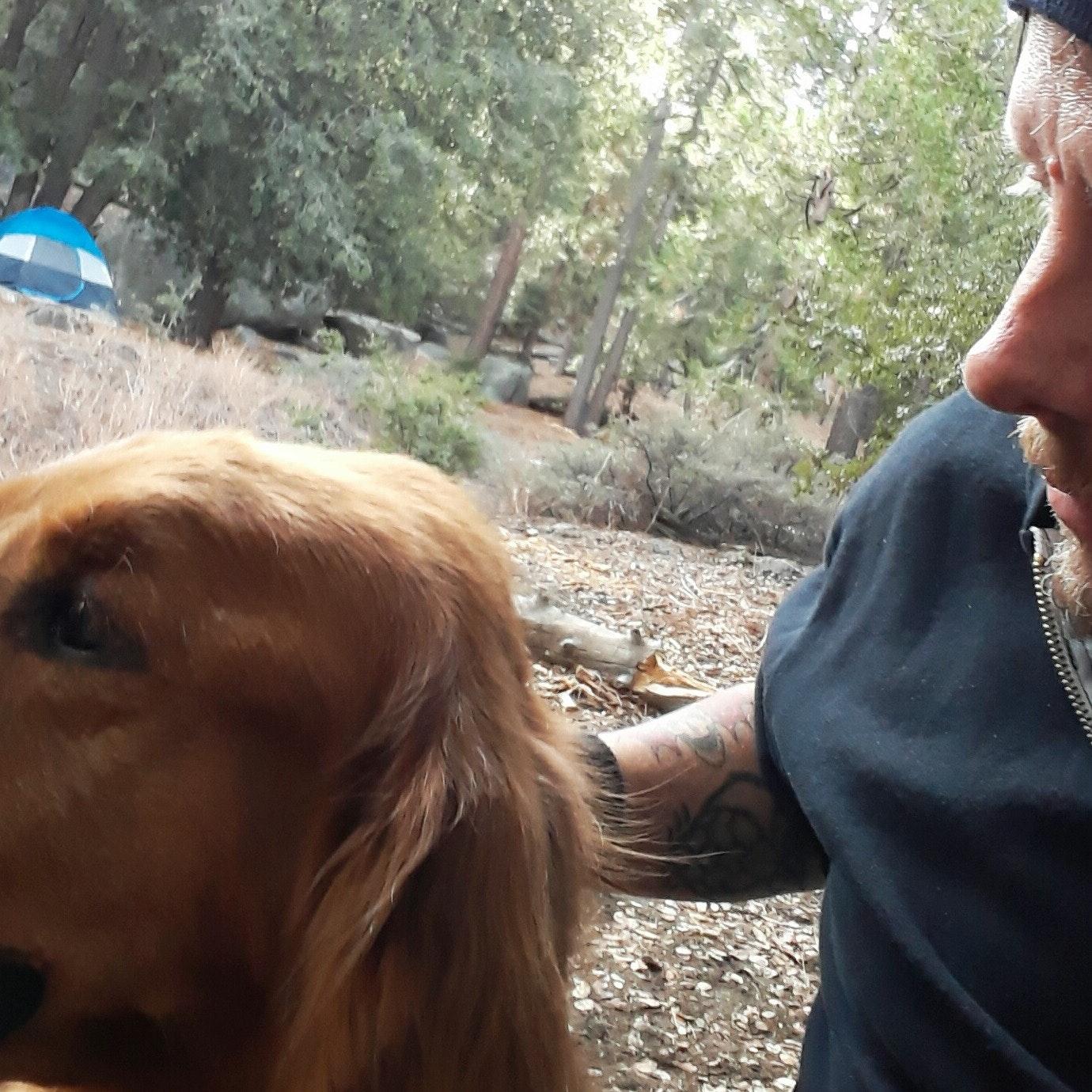 dog walker Doug