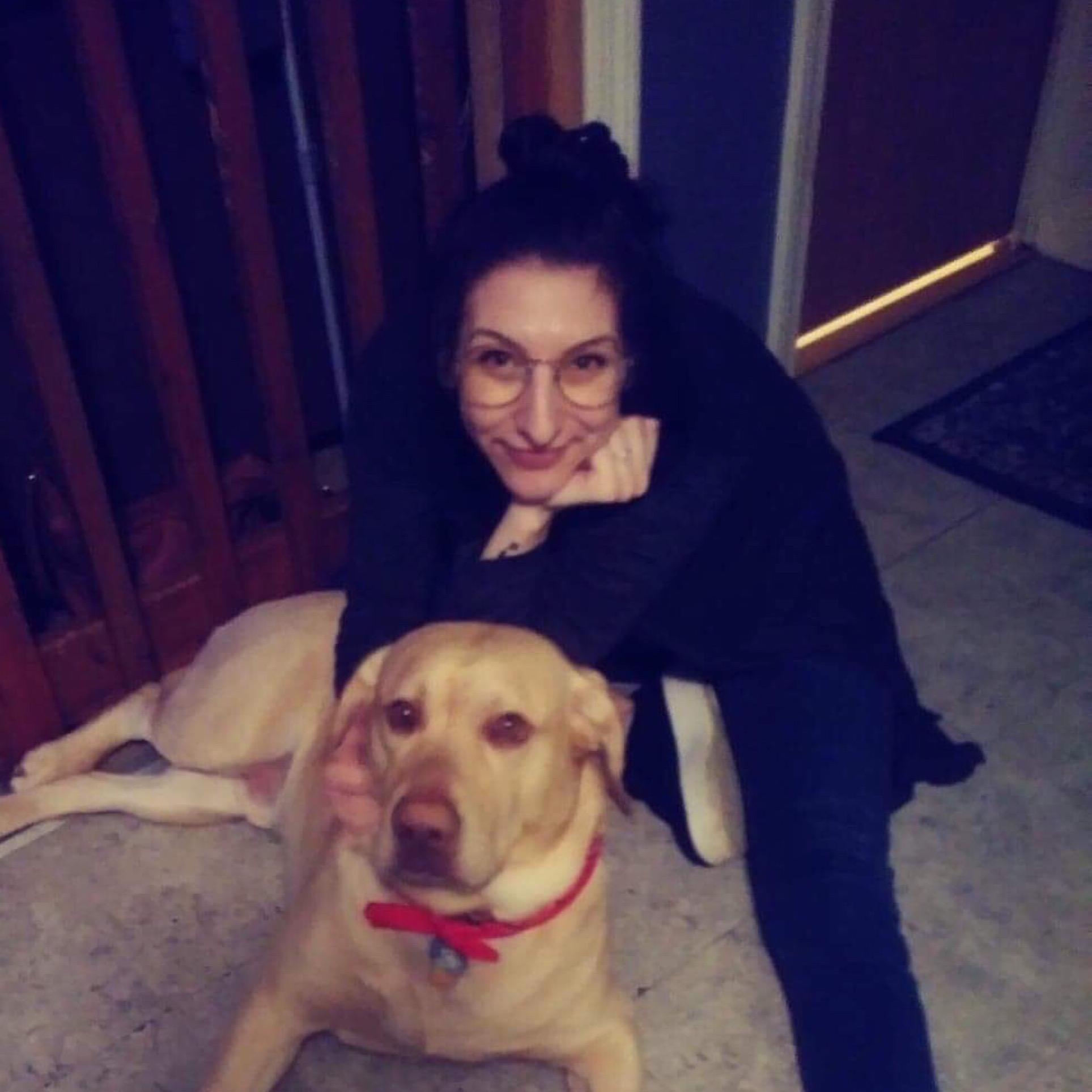 Amie's dog boarding