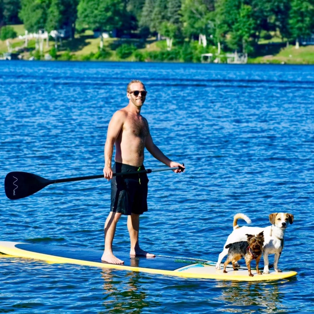 Mike's dog boarding