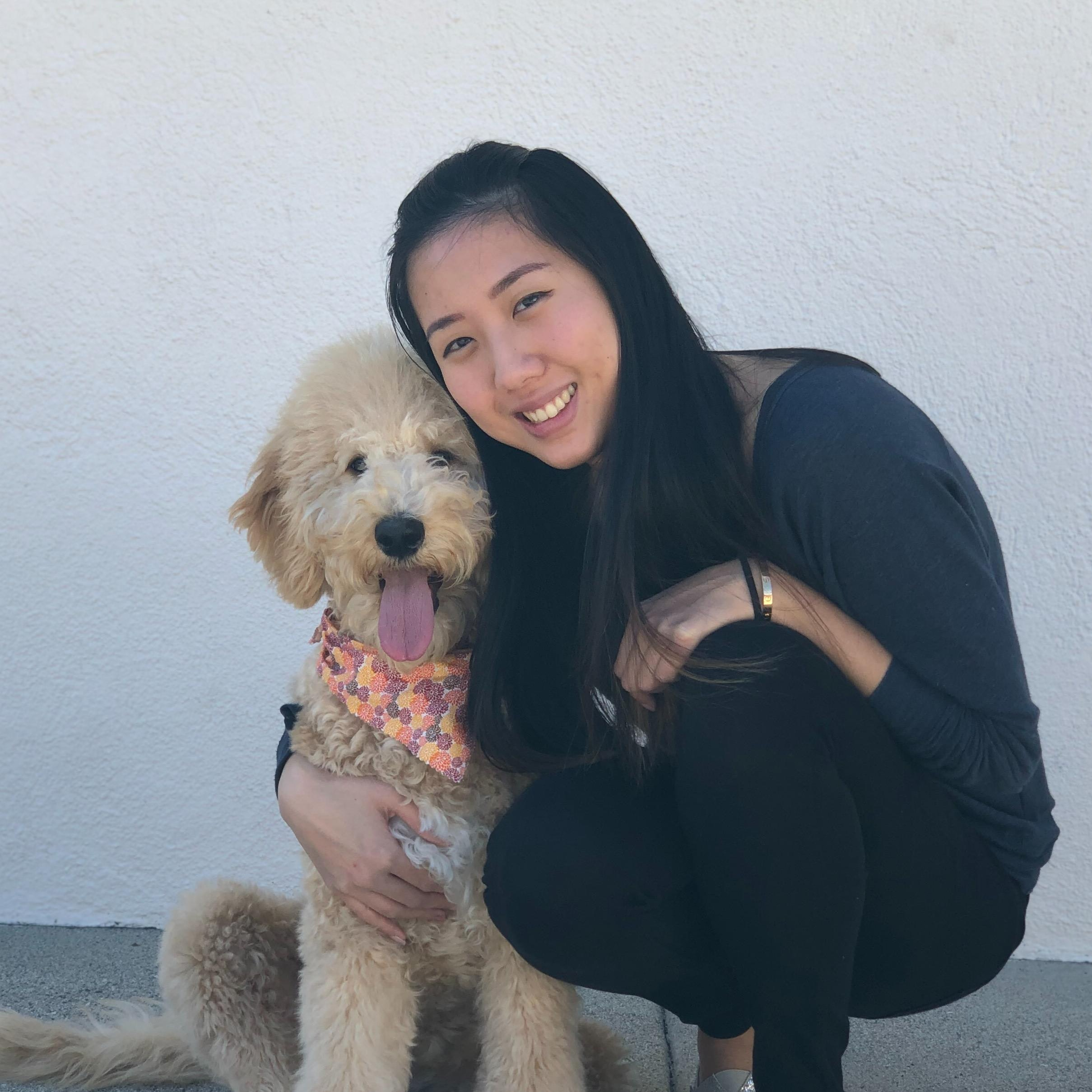 Cindy's dog boarding