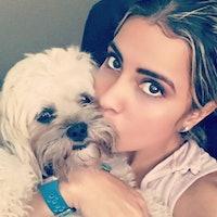 Sonia's dog boarding