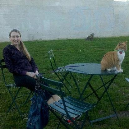 pet sitter Shannon