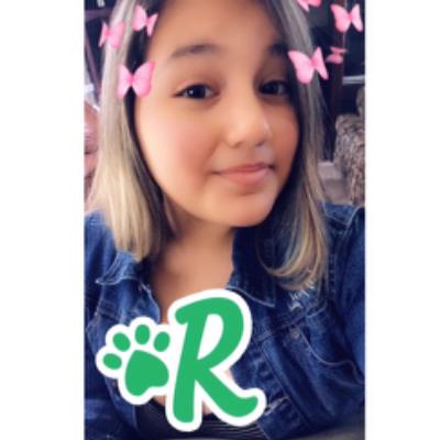 Rosa's dog boarding