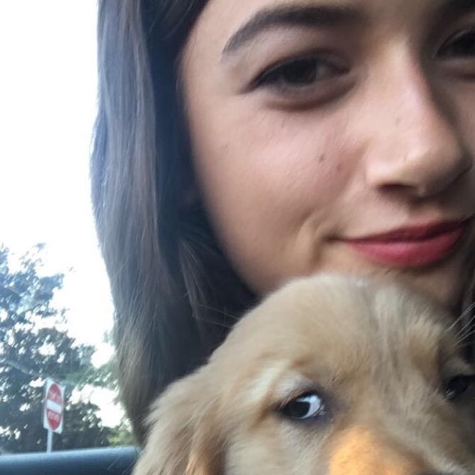 Tiahna's dog day care